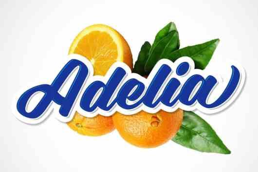 Adelia - Modern Logo & Signage Font