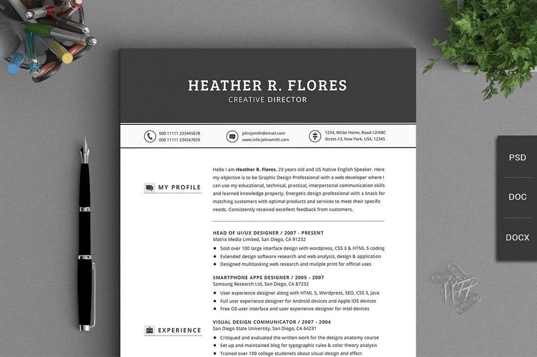 The Best CV & Resume Templates: 50 Examples 27