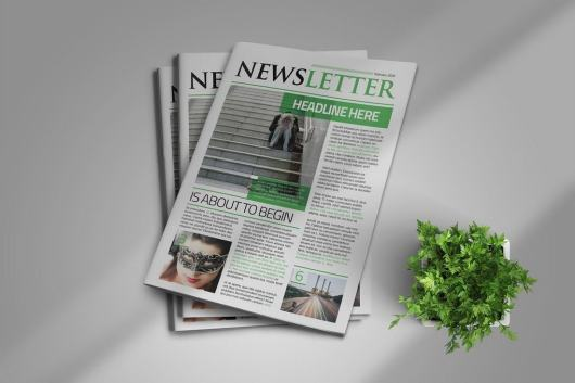 Clean InDesign Newsletter Template