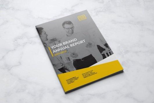 Victorio Annual Report Template