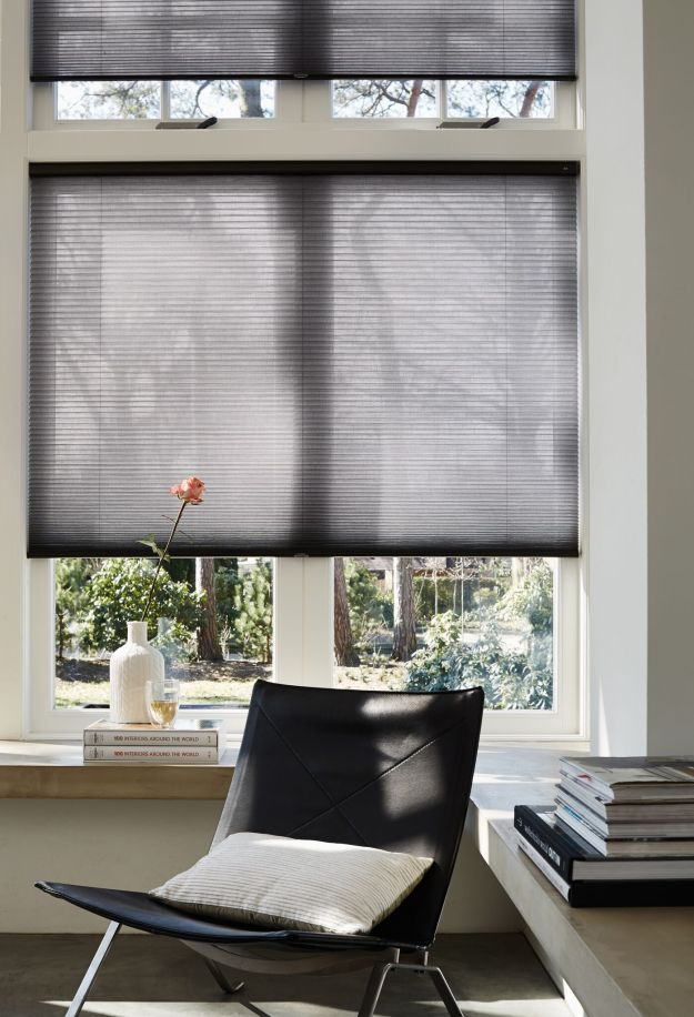 Duette Shades grey with lite rise