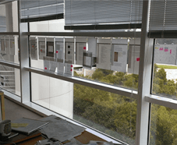 User stories and notes line the windows of the offices of the Getty web group. Image courtesy Susan Edwards and Ahree Lee, J. Paul Getty Trust.