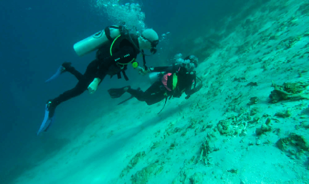 Learning to dive in Komodo
