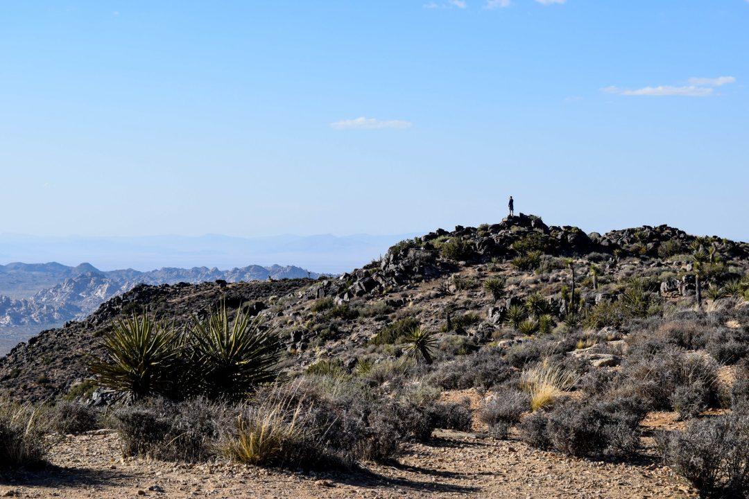 Peak of Ryan Mountain