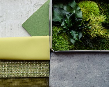 Design to Five - Biophilic Design - Green and Plant Finish and Material Palette