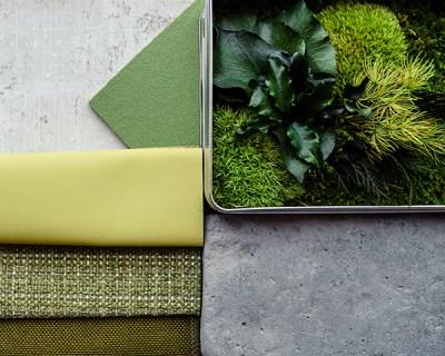 Quinta da Regaleria Finish Material Palette Biophilic Design