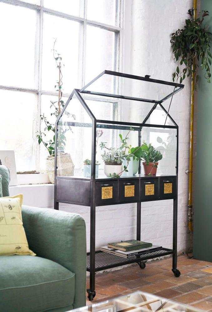 idee per arredare con le piante