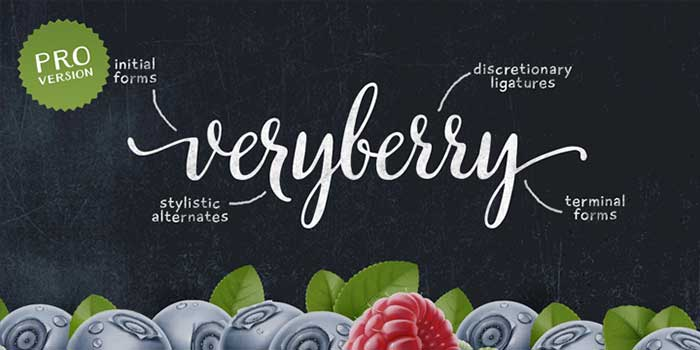 Veryberry by My Creative Land, a beautiful calligraphy script font. One of the font types I recommend for feminine designs in this roundup of 9 feminine font trends for 2016.