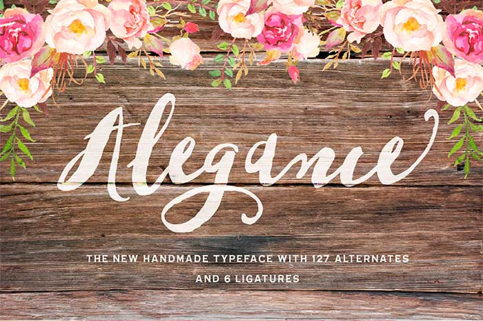 Alegance is part of the 15 font families for $15 bundle!