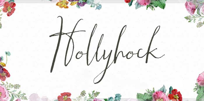Hollyhock is one of 20 Beautiful Handwritten Script Fonts on www.DesignYourOwnBlog.com