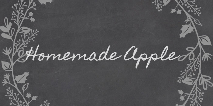 Homemade Apple is one of 20 Beautiful Handwritten Script Fonts on www.DesignYourOwnBlog.com
