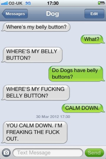 text from my dog belly button Text from my Dog