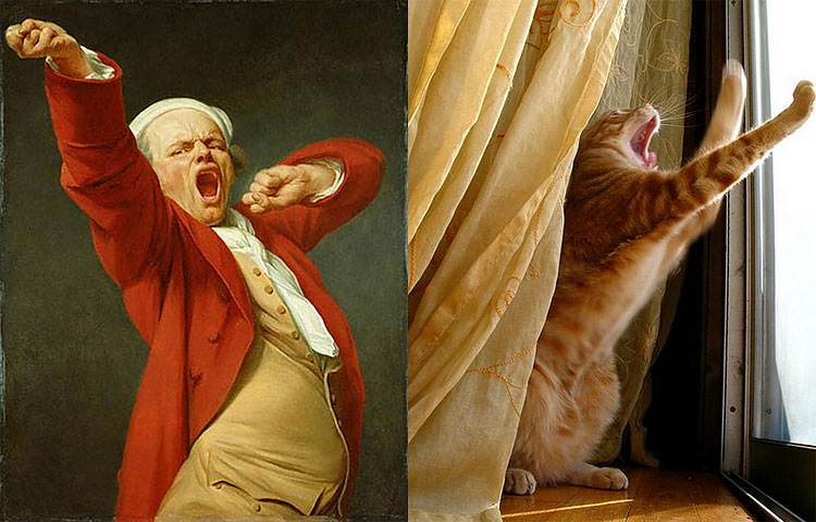 203 The Copycats: Cats Imitating Famous Works Of Art