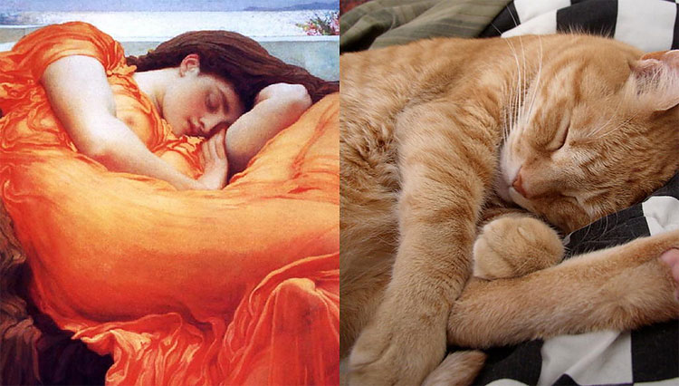 449 The Copycats: Cats Imitating Famous Works Of Art