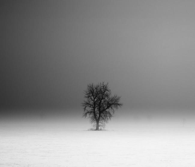 Derek Toye 650x559 Black and White Landscapes by Derek Toye