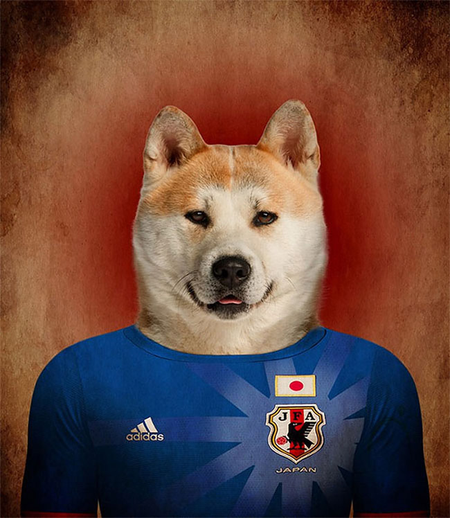 1339 Dogs Of Word Cup Brazil 2014