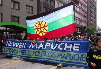 mapuche libertad