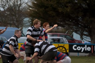Contesting the lineout