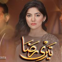 Teri Raza ~ Episode 2 Review