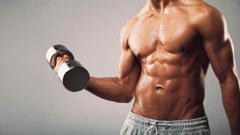 Bodybuilding Masterclass for Beginners (2018)