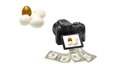 Sell Photo Online: Earn USD 5000 per month Stock Photography