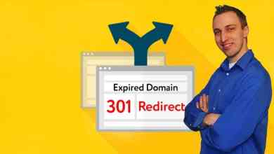 SEO Secrets of Google: Expired Domains & 301 Redirects