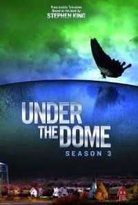 Download Under the Dome (2015) S03 Hindi Dubbed WEB Series