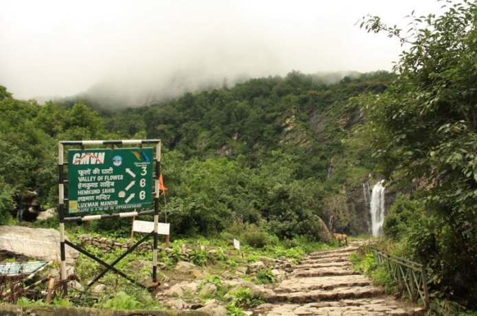 How to reach Valley of Flowers for Trekking