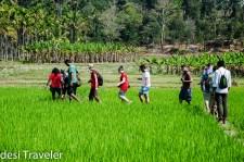 A Gandhian and a Plantation Homestay in Wayanad Kerala