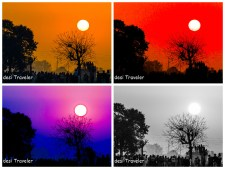 Pick the image from Punjab you like most
