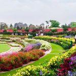 Mughal Garden Rashtrapati Bhawan