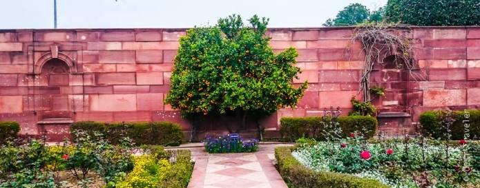 Mughal Gardens Delhi (27)