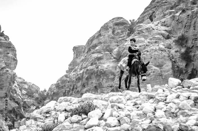 Donkey Bedouin Petra Jordan