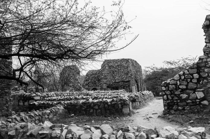 mehrauli archaeological park (7)