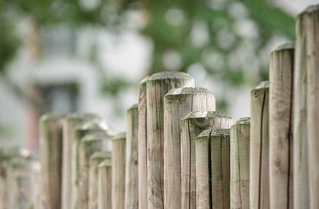 wood garden fence board