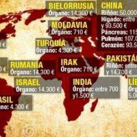 Tráfico de órganos: las culpas de Israel nunca purgadas (Artículo de Alessandro Pagani)