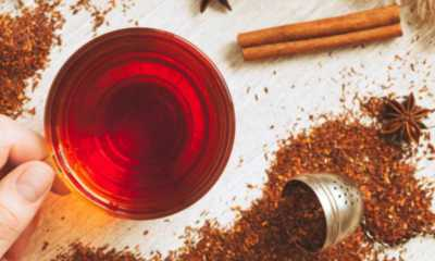 El te Rooibos previene el cancer