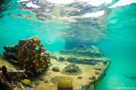 Navio naufragado na frente da isla Perro Foto por: www.angryboar.com