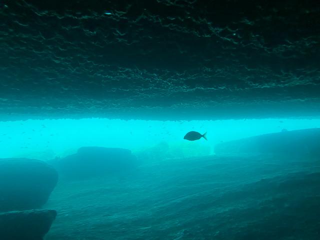 Ilha Grande Passeio para a gruta de Acaiá