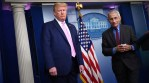 Death Toll Passes 21,000 in USA; Behind Trump's Failure on Coronavirus