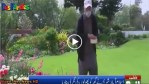 Islamabad Resident Ghazanfar's Love For Flowers