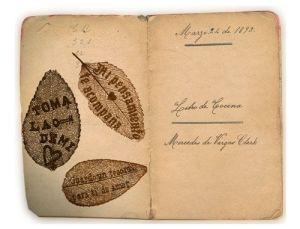 Libro de Cocina 1893