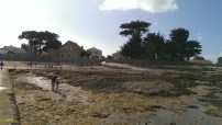 Plage du Vieil, Noirmoutier @desperatecouchpotatoe