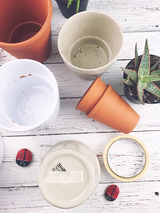 How to Prep Pots for Planting Succulents