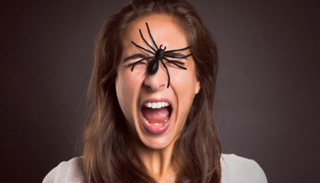 ¿Por qué tenemos fobias?