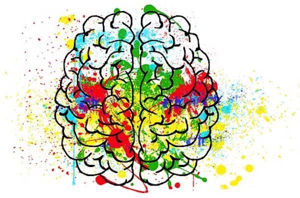 cerebro bdnf despierta y entrena