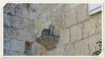 chat-perché-La-Romieu