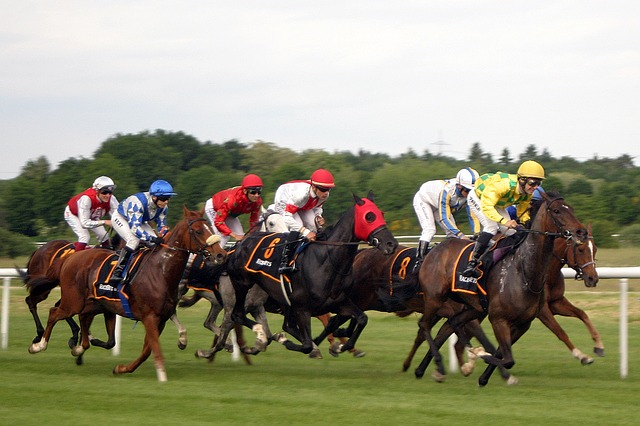 Deauville course de chevaux