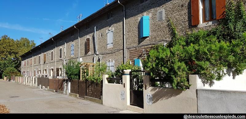 Visiter la camargue salin de giraud et son marais - Office du tourisme salin de giraud ...