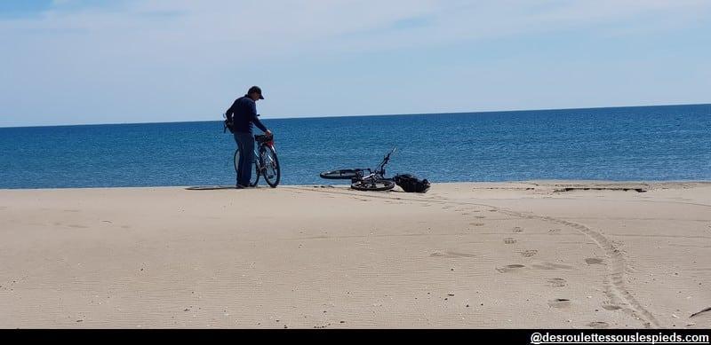 visiter la camargue au bord de la plage